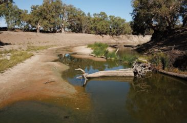 Murray Darling River