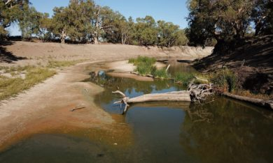 Murray Darling River