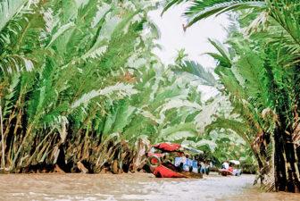 embarcations dans le delta du Mékong