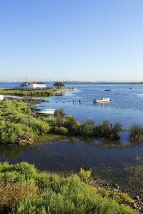 France, Bouches du Rhone (13), Port Saint Louis du Rhone, Golfe de Fos, port industriel de Fos sur Mer en arriere plan