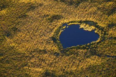 France, Bouches du Rhone (13), parc naturel regional de Camargue, Arles, Marais de Meyranne (vue aerienne)