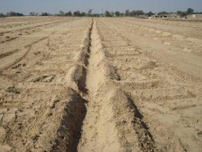 desert control before