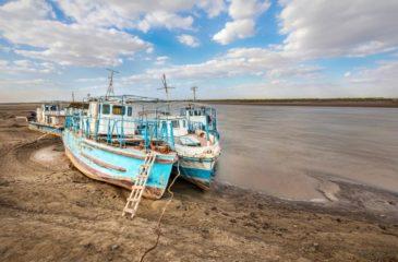 Amu Darya River - Sergey Dzyuba/Shutterstock